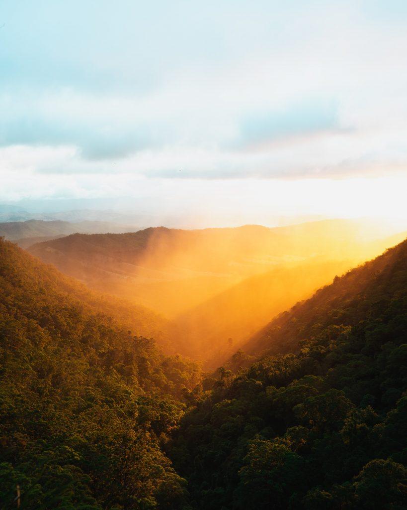Sunrise over O'Reilly's rainforest